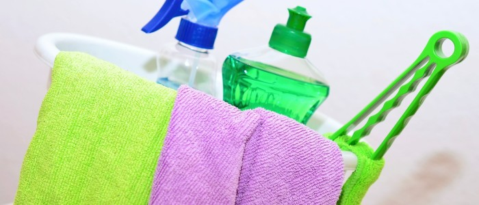 Professional House Cleaning Services 443 637 2202
